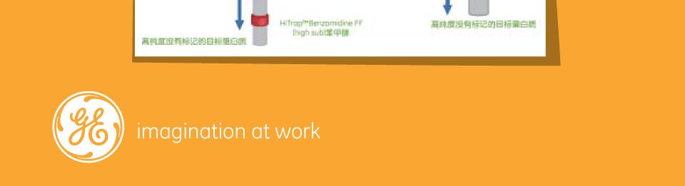 重组标签蛋白纯化促销方案终稿