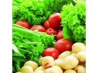 食品农残检测